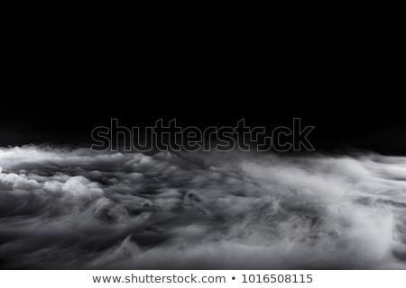 Abstract black fume pattern on white Stock photo © Arsgera