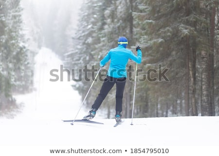 ski run stock photo © yoshiyayo