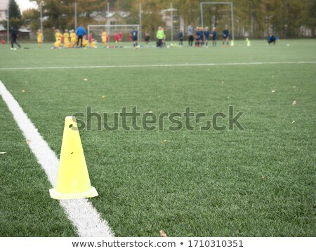 Part of the floor markings of football. Stock photo © borysshevchuk