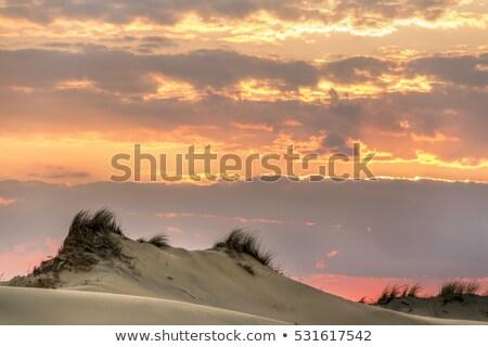 морем небе горизонте Маяк Закинф Сток-фото © sirylok