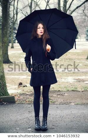 Photo of beautiful cutie with long legs Stock photo © konradbak