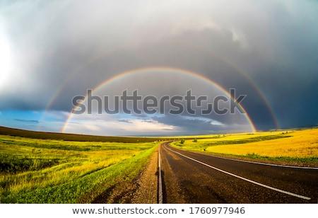 asfalto · carretera · verde · campo · arco · iris · verano - foto stock © mikko