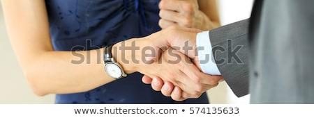 Stock fotó: üzletasszony · felajánlás · kézfogás · tart · ki · kéz