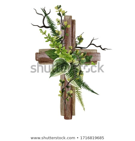 Fern Cross Stock photo © rghenry