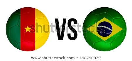 Kameroen vs groep fase wedstrijd Stockfoto © smocker03