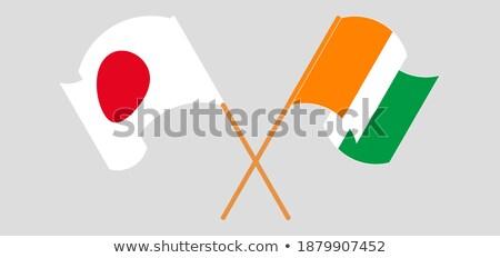 Берег · Слоновой · Кости · мяча · футбольным · мячом · флаг · Футбол · спорт - Сток-фото © smocker03