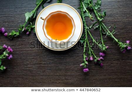 bocado · roxo · pormenor · verde · flor - foto stock © kayco