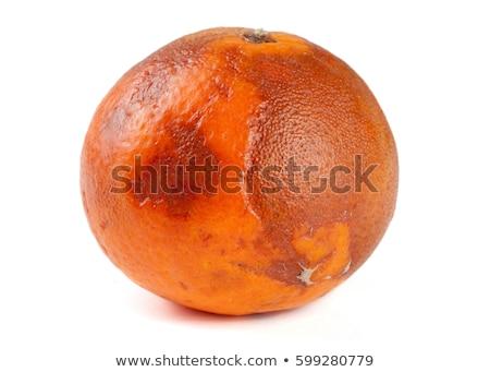 Moldy orange isolated on white Stock photo © lucielang