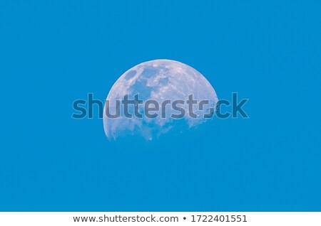 白 · エジプト · 美 · 青空 · 空 · 夏 - ストックフォト © master1305