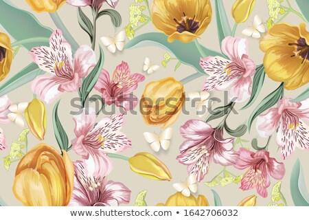 Jaune Lily mise au point sélective isolé blanche Photo stock © vtls