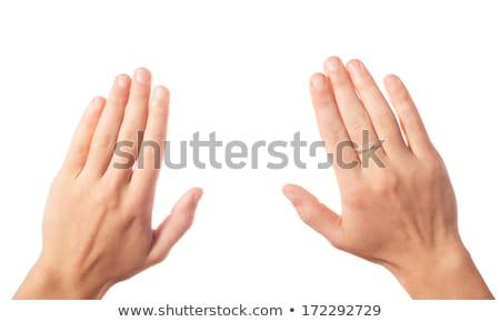 Kettő kezek izolált fehér megbeszélés test Stock fotó © tetkoren