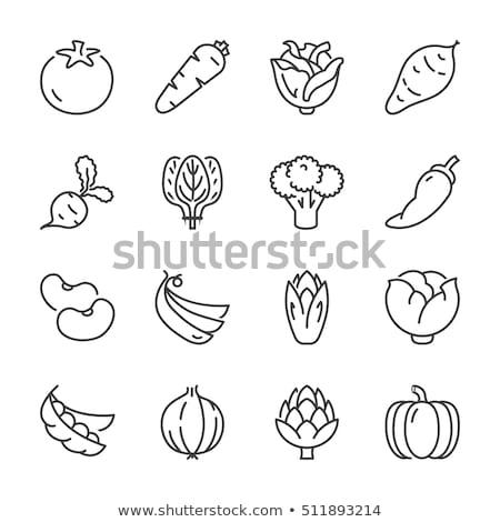 chile · pimienta · icono · blanco · vector · caliente - foto stock © rastudio