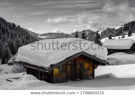 Dünya kar pansiyon doğa ağaçlar Stok fotoğraf © EFischen