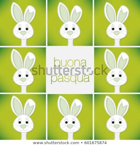 Olasz kellemes húsvétot fényes tojás kártya vektor Stock fotó © piccola