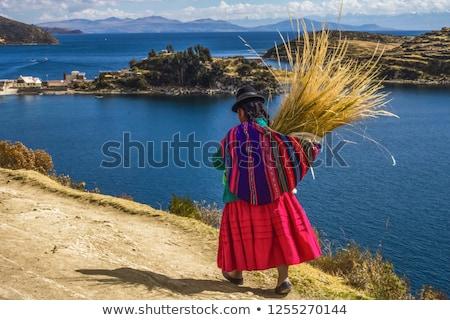 view to Titicaca lake at  Isla del Sol   Stock photo © meinzahn