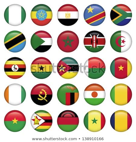 Нигер флаг кнопки текстуры зеленый путешествия Сток-фото © ojal