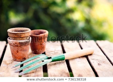 Tuin tools bloemen zonneschijn houten zon Stockfoto © -Baks-