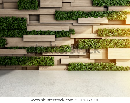 Background design with wooden wall and plants Stock photo © bluering