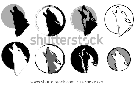 howling wolf with moon vector set stock photo © beaubelle