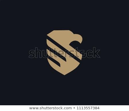Falcão logotipo modelo Águia pássaro vetor Foto stock © Ggs