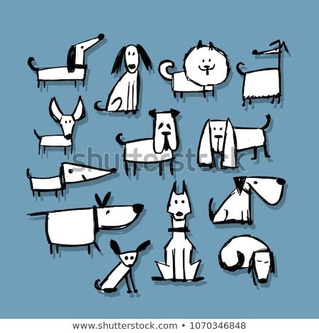 vetor · desenho · animado · estilo · ilustração · cão · ícone - foto stock © curiosity