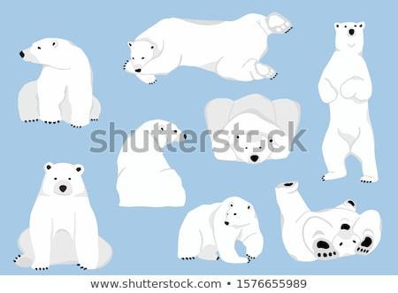Illusztráció aranyos jegesmedve barlang jég tél Stock fotó © Olena