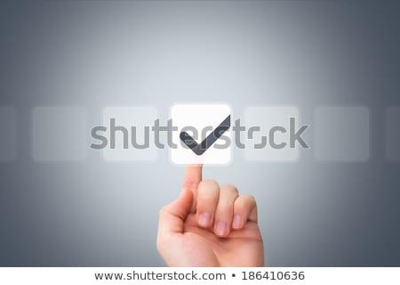 Hand Touching VOTE Key. Stock photo © tashatuvango