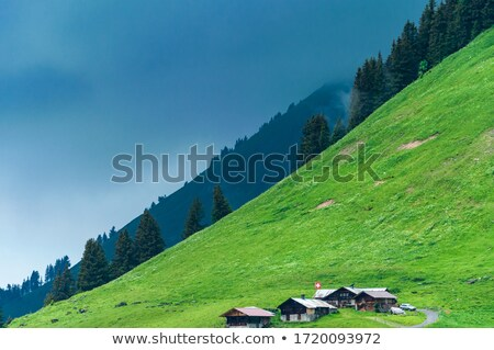 Buildings behind grassy hill Stock photo © IS2