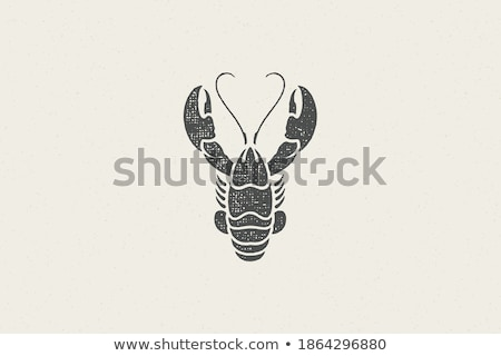 Seafood and Crustacean Icons Vintage Illustration Stock photo © robuart