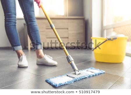 donna · delle · pulizie · cantare · pulizie · di · primavera · cute · divertente - foto d'archivio © dolgachov