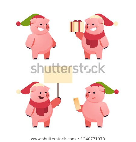 new year pigs with gift box and greeting signboard stock photo © robuart