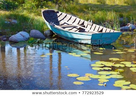 green rowboats stock photo © craig