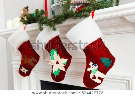 Natale calze camino illustrazione bambino animali Foto d'archivio © adrenalina