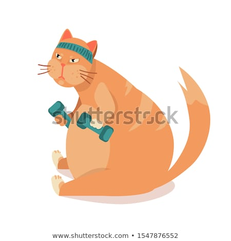 lose weight and pumping muscles fitness vector stock photo © robuart