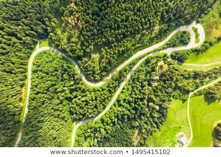 aerial view black forest stock photo © unkreatives