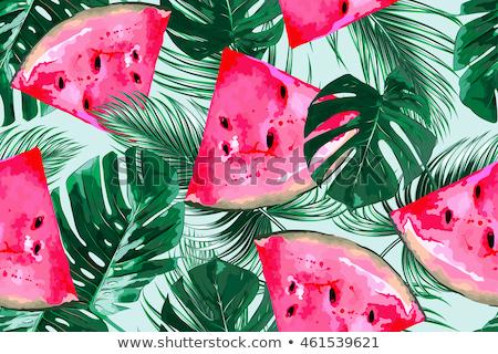 Photo stock: Pastèque · feuilles · vertes · été · tropicales · sweet