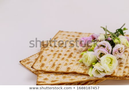 Symbolisch vakantie Joods Paasfeest viering voorjaar wijn Stockfoto © furmanphoto