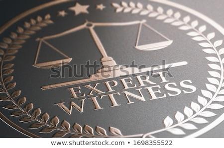 Jogi szakértelem szakértő tanú szolgáltatás 3d illusztráció Stock fotó © olivier_le_moal