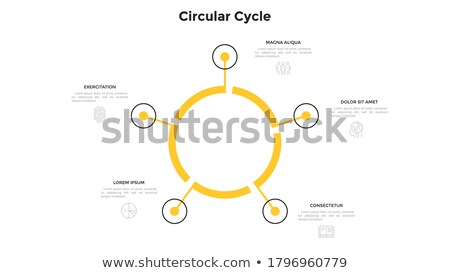 Five steps cycle template infographic Stock photo © orson