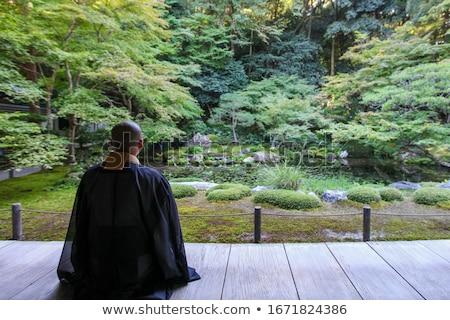 Man in a Zen garden Stock photo © photography33