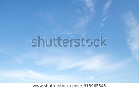 Wispy Clouds Stock photo © skylight