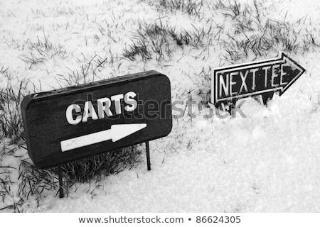 próximo · assinar · inverno · neve · irlandês · campo · de · golfe - foto stock © morrbyte
