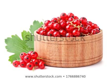 Rojo grosella frutas aislado blanco Foto stock © Masha