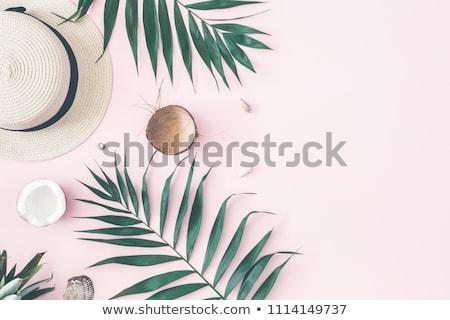 ココナッツ · テクスチャ · フルーツ · 夏 · 緑 · 生活 - ストックフォト © stevanovicigor