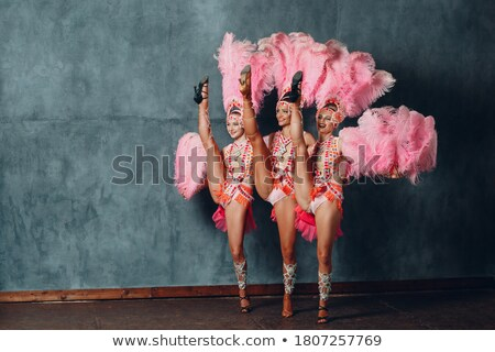 cabaret #3 Stock photo © dolgachov