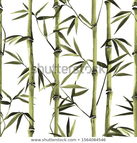 bambú · wallpaper · sin · costura · patrón · elemento · diseno - foto stock © artizarus