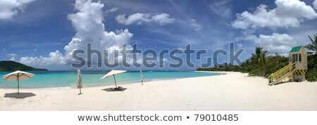 Flamenco Beach Culebra Panoramic View Stock photo © ArenaCreative