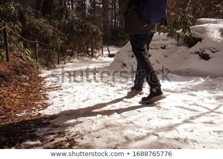 снега · Тени · аннотация · фон · белый - Сток-фото © kimmit