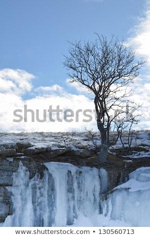 mészkő · sziklák · jeges · part · sziget · Balti-tenger - stock fotó © olandsfokus