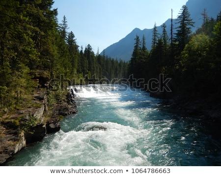 Rapid mountain river  Stock photo © Kotenko